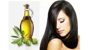 Minyak Zaitun Untuk Memanjangkan Rambut cara memanjangkan rambut dengan minyak zaitun segiempat