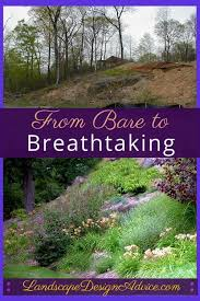 Design Your Backyard Online by 104 Best Slope Plantings Images On Pinterest Backyard Ideas