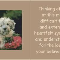 dog condolences dog condolences animated gifs photobucket