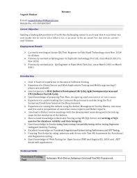 Test Engineer Resume Objective Testing Engineer Resume Test Engineer Resume Samples Visualcv