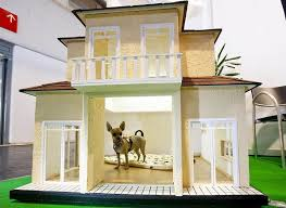 Dog House Interior Adorable Dog House Designs For The Comfortable Living Of Our Pets