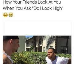 Funny Stoner Memes - stoner 101