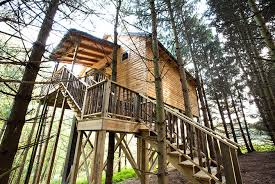 treehouse hotel pennsylvania ohio amish country lodging whispering pines tree house cabin