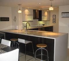 Ikea Small Kitchen Design Ideas by Ikea Design Kitchen Kitchen Design Ideas Buyessaypapersonline Xyz