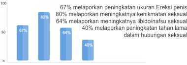 obatpembesarvimaxasli com traffic statistics rank page speed