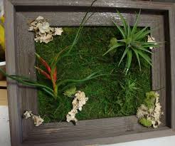 articles with grovert living wall planter australia tag living