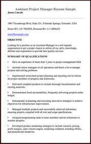 Assistant Project Manager Resume Sample by Clerk Typist Resume Sample Http Resumesdesign Com Clerk Typist