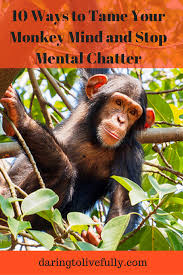 10 Monkeys Jumping On The Bed 10 Ways To Tame Your Monkey Mind And Stop Mental Chatter