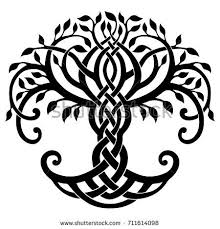 vector illustration decorative celtic tree stock photo photo
