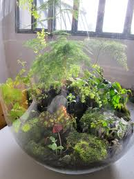 what pretty colors terrariums pinterest terraria