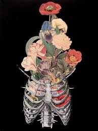 floral art exhibition wallpapers bone bouquet anatomical ribcage collage art by bedelgeuse on etsy