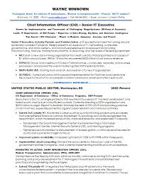 Cio Resume Samples by Resume Samples It Security