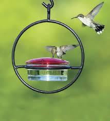 Jewel Box Window Hummingbird Feeder Hummingbird Feeder Usa