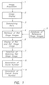 patent us20030053673 radiographic scoring method google patents