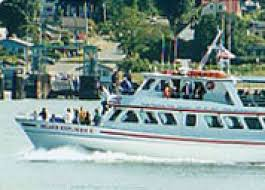 about island adventures orca whale watch tours u2026 island adventures