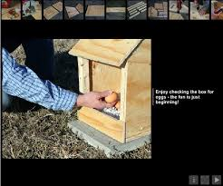 Wood Box Plans Free by 8 Free Chicken Nesting Box Plans And Ideas The Poultry Guide