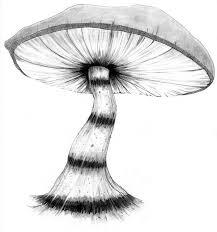caterpillar u0027s mushroom by hatterandharestudios on deviantart