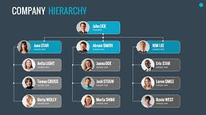 organizational chart and hierarchy template by sananik graphicriver
