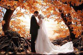 Wedding Trees Beautiful Fall Wedding Ideas That Feature Trees Travel Bandit