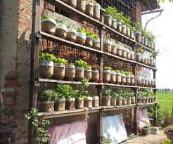 Verticle Gardening by Self Watering Vertical Garden With Recycled Water Bottles 6 Steps