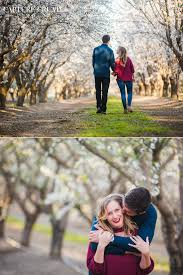 sacramento photographers almond tree engagement sweetness sacramento wedding photography