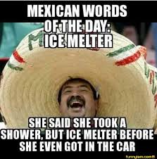 Mexican Word Of The Day Meme - 113 best mexican word of the day images on pinterest ha ha