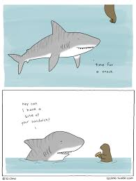 liz climo when you need to smile pinterest shark attacks