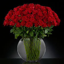 Long Stem Roses Breathless Luxury Rose Bouquet Premium Long Stemmed Roses U2013 100