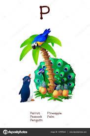 imagenes en ingles con la letra p série do alfabeto inglês de animais divertidos letra p vetores de
