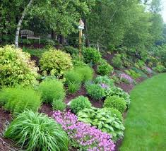 landscaping steep slopes plants landscaping and gardens
