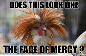 Rooster Meme - afro rooster by ahad sikhaki meme center