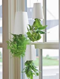 Hanging Indoor Planter by 45 Best Sky Planter Indoor Images On Pinterest Indoor