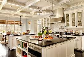 island kitchen single wall with island kitchen design