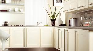 succulent kitchen cabinets chicago tags free standing kitchen