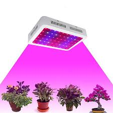 Indoor Plant Light by Us Stock Full Spectrum Led Grow Light 600 1000 1200w Double Chips