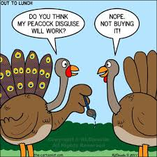 index of gallery var albums 2014 thanksgiving turkey memes