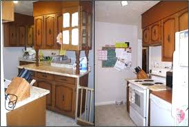 rona kitchen cabinets toronto handles cabinet paint bathroom