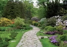 immagini di giardini fioriti foto giardino fiorito di filippo parisi giardinaggio 116740