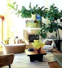 best plants for bedroom bedroom with plants air purifying plants for sleep bedroom plants