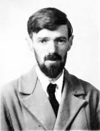 amazon black friday wiki d h lawrence wikipedia