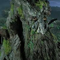 treebeard lord of the rings character quora