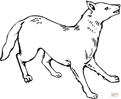 coyote coloring page 3415