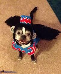 Flying Monkey Costume Flying Monkey Halloween Costume Contest At Costume Works Com