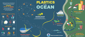 plastics in the ocean how they get there their impacts and our