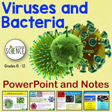 viruses and bacteria powerpoint by amy brown science tpt