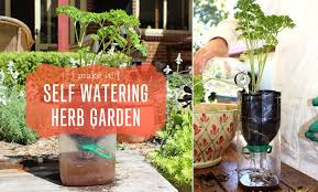 How To Make Self Watering Planters by Reusing Our Plastic Self Watering Herb Garden Moomah The Magazine