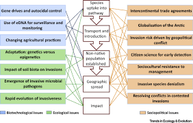 invasion science a horizon scan of emerging challenges and