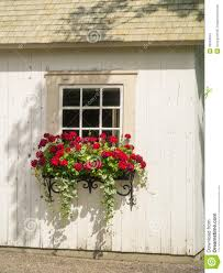 white wall window and flowers in window box planter stock photo