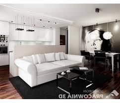 cozy small living room design ideas decor designs space great arafen