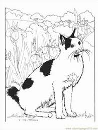 cat color pages printable norwegian forest cat coloring